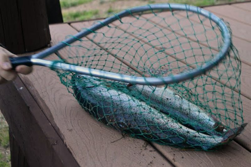 5 Simple Rules to Taking Kids Fishing | RaisingAdventure.com